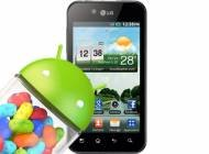 LG-Optimus-Black-P970